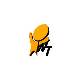 Winning Team s.r.l logo
