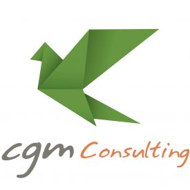 CGM Consulting S.r.l. logo
