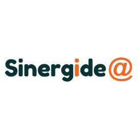 SINERGIDEA S.R.L.