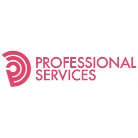 PROFESSIONAL SERVICES SRL